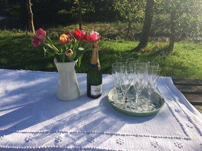 Paintbox Luxury Art Retreat- Sunshine and Champagne